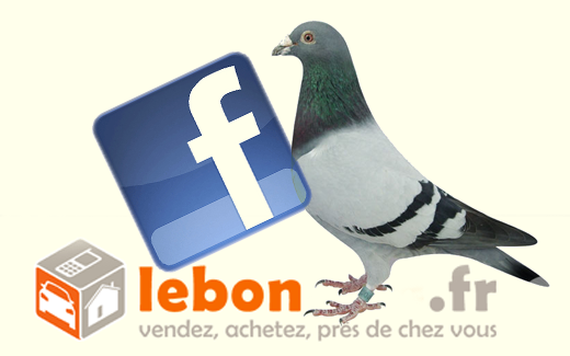 ami facebook recherche pigeon pour arnaque au bon coin le bisonteint. Black Bedroom Furniture Sets. Home Design Ideas