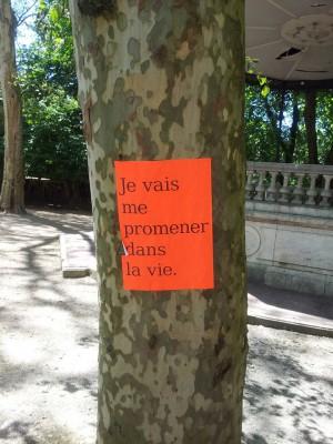Sur un arbre de Granvelle