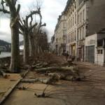 Photo Jeunes Écologistes Franche-Comté
